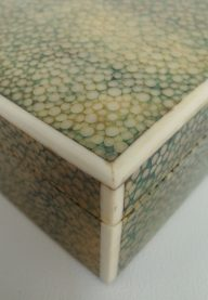 Shagreen box detail 2
